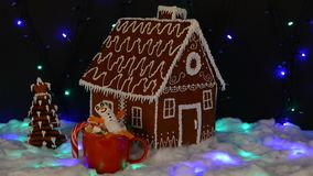 The hand-made eatable gingerbread house, marshmallow snowman  in mag,  New Year tree, snow decoration stock footage