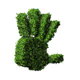 Hand made from green leaves. Stock Images