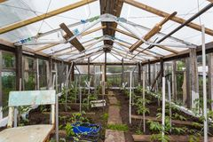 It is hand made greenhouse Stock Photo