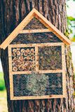 Hand made home for hibernating insects. Homes for insects and minibeasts in a tree from a finnish park- this construction is a shelter for hibernating insects Royalty Free Stock Photos