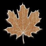 Hand-made maple leaf Stock Photos