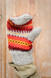 Hand made mitten. Colorful hand made mitten, waving Stock Images