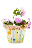 Hand Made Mother's Day Gift from Child Royalty Free Stock Image