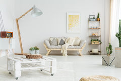 Hand-made pallet table. White hand-made pallet table with plants in living room royalty free stock photo