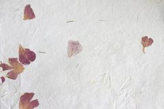 Hand made paper - petals stock photo