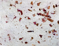 Hand made paper with rose petals macro Royalty Free Stock Image