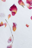 Hand made paper texture with flower petals Stock Images