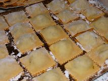 Hand made ravioli pasta on a tray. Rows of handmade fresh ravioli pasta on a floured tray Stock Photography