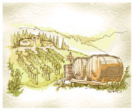 Hand made sketch grape fields and vineyards. Royalty Free Stock Image