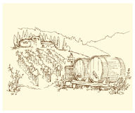 Hand made sketch grape fields and vineyards. Royalty Free Stock Photography