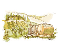 Hand made sketch grape fields and vineyards. Stock Photography