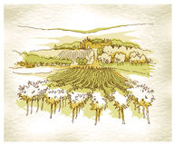 Hand made sketch grape fields and vineyards. Sketch of old street. Vector illustration made in vintage style Stock Image