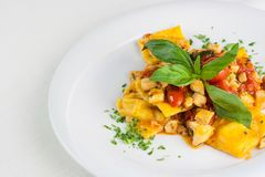 Ravioli pasta traditional italian food with tuna, basil, tomato,. Hand made typical italian pasta named ravioli Royalty Free Stock Images