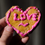 Hand made Valentine's Day cookie in the hand Royalty Free Stock Image