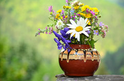 Hand Made Vase With Forest Flowers Royalty Free Stock Photos