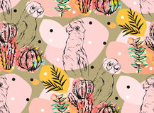 Hand made vector abstract collage seamless pattern with tropical parrots,cactus plants and succulent flowers isolated on Royalty Free Stock Images