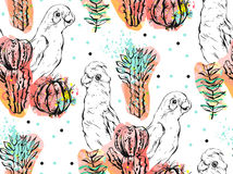Hand Made Vector Abstract Collage Seamless Pattern With Tropical Parrots,cactus Plants And Succulent Flowers Isolated On Royalty Free Stock Photography