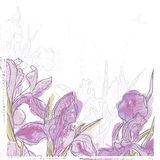 Hand made watercolor iris flowers seamless banner Royalty Free Stock Photo