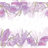 Hand made watercolor iris flowers seamless banner Royalty Free Stock Images
