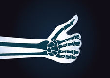 Hand make thumbs up gesture. Stock Image