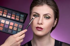 Hand of makeup artist paints the girl brow royalty free stock images