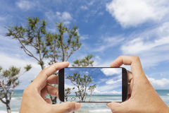 Hand male asian holding Smartphone taking picture of Landscape v Stock Images
