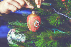 Hand man decorate Christmas tree beautiful red toy Stock Image