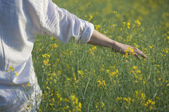 Hand of man in field Stock Photography