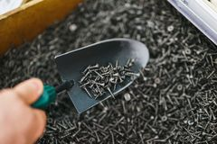 Hand man metal shovel, pours lot of black small screws repair and fasteners in the box close-up. Hand man metal shovel, pours a lot of black small screws for stock photos