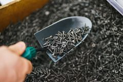 Hand man metal shovel, pours lot of black small screws repair and fasteners in the box close-up. Hand man metal shovel, pours a lot of black small screws for royalty free stock image