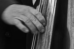 Hand of a man playing double bass Royalty Free Stock Photo