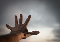 Hand of a man. Stock Images