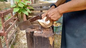 Hand of Man scraping Coconut Meat Stock Photo