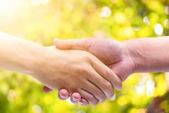 Hand man Shake hands on green bokeh background. This photo symbols of together and succeed Royalty Free Stock Images