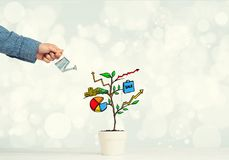 Drawn income tree in white pot for business investment savings and making money Stock Images