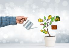 Drawn income tree in white pot for business investment savings and making money Royalty Free Stock Images