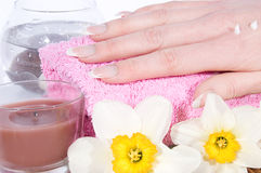 Hand with manicure Royalty Free Stock Images