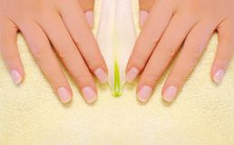 Hand manicure Royalty Free Stock Images