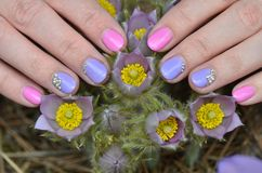 Hand with manicure touches the flowers of the snowdrop stock photos