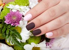 Hand with manicured nails colored with pink and purple nail polish Stock Images