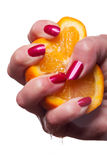 Hand with manicured nails painted a deep glossy red. Touch an orange on white background royalty free stock photos