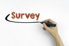 Hand with marker writing - Survey concept. White paper background.  stock photo