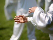 Hand of martial arts master Tai Chi with followers. Hand of martial arts master Tai Chi during the exhibition in public park Stock Photos