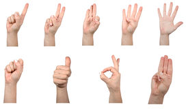 Hand math. Various number signs with a hand on a white background Stock Image