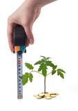 Hand measures plant growth. Tape-measure in hand surveying plant growth (isolated) - concept for business growth and business efficiency royalty free stock photography