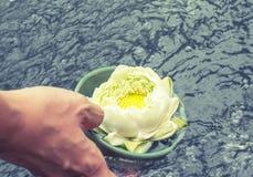 Hand med den Lotus blomman som svävar på vattnet Arkivfoto