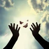 Hand med fjärilen i himmel Arkivbild