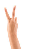 Hand med fred- eller segertecknet Arkivbild