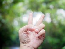 Hand med tv? fingrar upp i freden eller tecknet f?r symbol av fred eller segern p? naturlig bakgrund royaltyfria bilder