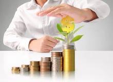 Hand menselijke hand die muntstuk zetten aan geld Stock Foto